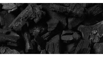 Geactiveerde houtskool: de oplossing voor een vette en onzuivere huid