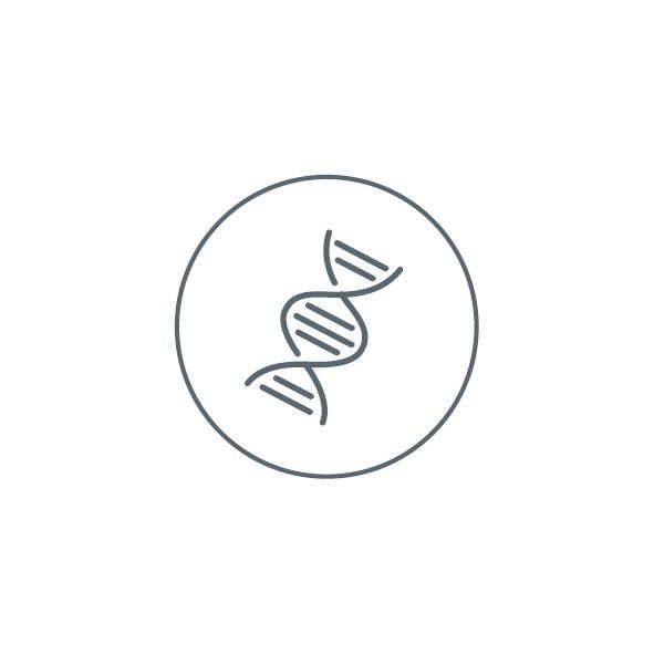 icon genen